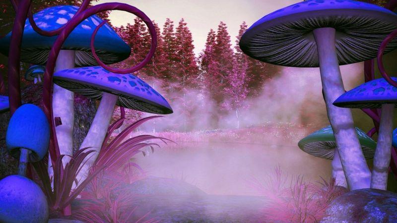 Mushrooms and depression